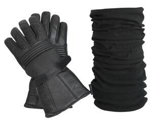 Kombi Set: Thermo Lederhandschuh<wbr/>e und Polar Multifunktions<wbr/>tuch in schwarz