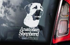 Anatolia-Shepherd-a-Bordo-Coche-Ventana-Pegatina-Kangal-Perro-Signo-Forma