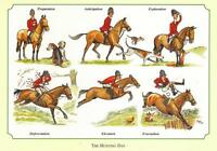 Pack Bryn Parry Horse Hunt Day Note Cards (8 Cards And Envelopes Per Pack),