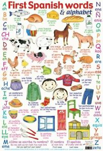 Poster-Spanish-Words-and-Alphabet-40x60cm