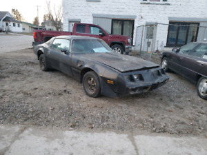 Trans am 81 4.9 l turbo