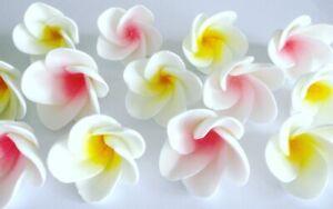 24-Edible-Sugar-Icing-Frangipani-Flowers-Cupcake-Toppers-Cake-Decoration-Foowers