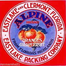 LADDER Florida CITRUS CRATE LABEL Old And  Authentic 7x7