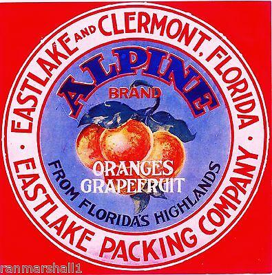 Plant City Florida Endurance Airplane Orange Citrus Fruit Crate Label Art Print