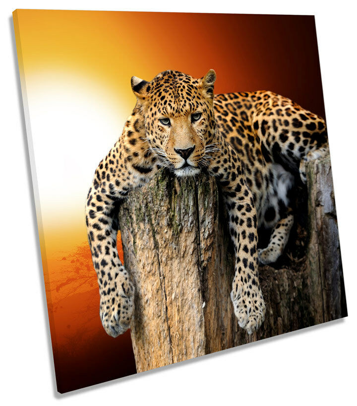 Leopard Sunset CANVAS Wand Kunst SQUARE Bild Drucken