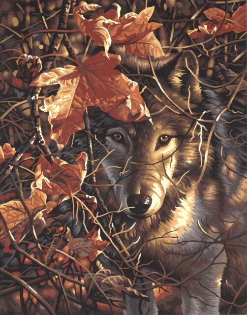 Dimensions Autumn Wolf Malen nach Zahlen mit Acrylfarben