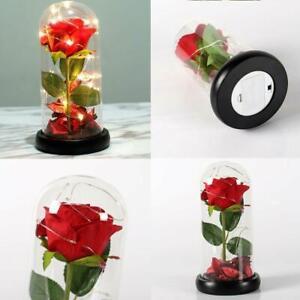 Led-Light Red Rose Gift For Girlfriend Boyfriend GF BF Wife Birthday Anniversary