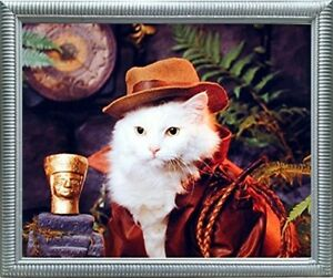 Indiana-Jones-Cat-Funny-Animal-Nature-Kids-Room-Wall-Decor-Silver-Framed-Picture