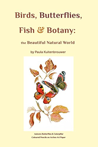 Birds, Butterflies, Fish and Botany, Very Good Condition Book, Kuitenbrouwer, Pa