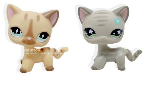 2pcs #886 #483 RARE Littlest Pet Shop LPS Gray Cream Short Hair CAT Kitty TOY