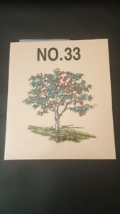Brother-Embroidery-Card-No-33-for-Brother-embroidery-machines-very-rare
