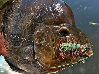 Fly Fishing Flies Scud Gray Olive x 6 Bass, Bream, Trout, Steelhead, Salmon