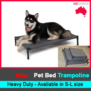Small-Size-Dog-Puppy-Cat-Pet-Bed-Trampoline-Heavy-Duty-Frame-Hammock-Canvas