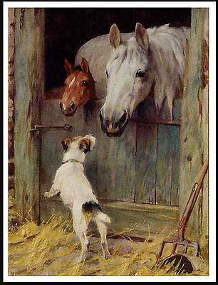 JACK RUSSELL FOX TERRIER AND HORSES IN STABLE LOVELY DOG PRINT POSTER