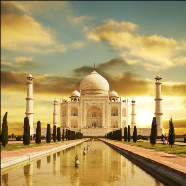 Adesivo Lavastoviglie Taj Mahal 60x60cm Ref 075