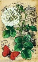 Fabric Block Vintage White Flower Red Butterfly Sheet Music Chic Shabby