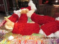 Warm And Soft Shaggy Red Fluffy Furry Dog Sweater All Sizes