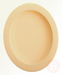 Sammons Preston Plate with Inside Edge, 9` Plate with Food Spill ...
