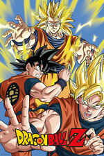 Dragon Ball Z Poster - Goku - New Japanese Animation poster FP4011