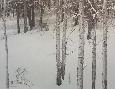 Vintage Art Robert Bateman 2 in 1 Edge Wood White Tailed Deer 1976 Woodpecker 74
