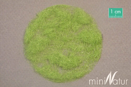 12,40 € Nº 004-21 prix//100gr Mininatur herbe Flock 4,5 mm Printemps 50gr