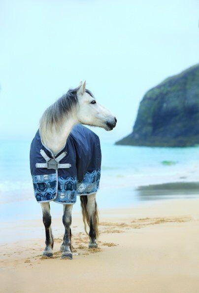 Horseware Amigo Hero 6 Castle Rock Rock Rock lite Discverschluss Regendecke Übergangsdecke 605fa8