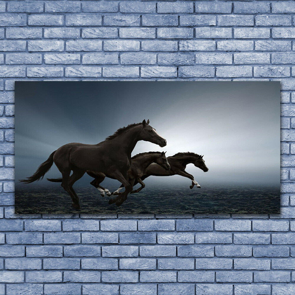 Glass print Wall art 140x70 Image Picture Picture Picture Horses Animals bd0be5