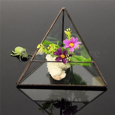 Irregular Glass Geometric Terrarium Box Tabletop Succulent Plant Planter HOT