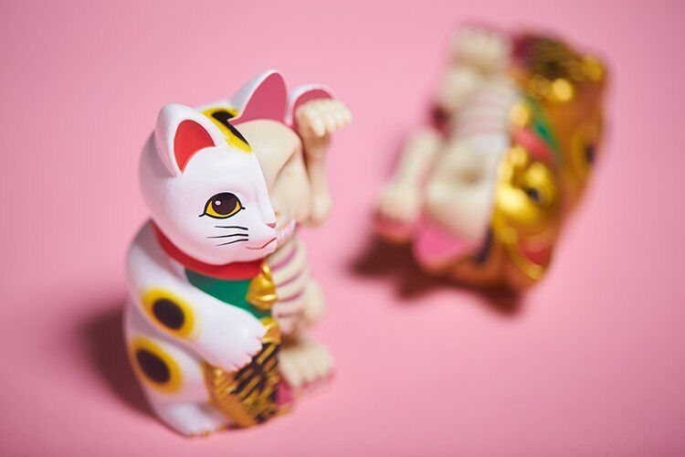 4D Master XXRAY Dissected Fortune Cat Jason Freeny bianca Version Nuovo