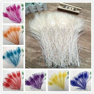 Wholesale 10//50//100 pcs high quality rooster tail feathers 10-12 inches 25-30cm
