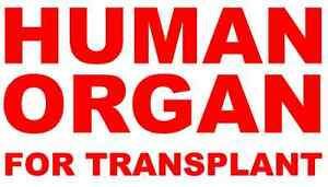 Vinyl-Decals-2-Human-Organ-For-Transplant-Medical-Hospital-Funny-Cooler-Lunch