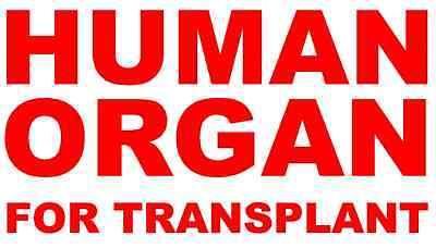 "4/""-18/"" ORGAN DONATION Save a Life Awareness Support Car Ribbon Vinyl Decal"