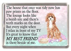 Cavapoo-Dog-Fridge-Magnet-034-MY-BEST-FRIEND-POEM-034-Novelty-Gift-by-Starprint