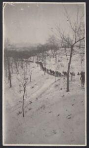 YZ2987-Italia-1918-Colonna-di-militari-con-muli-tra-la-neve-Foto-d-039-epoca