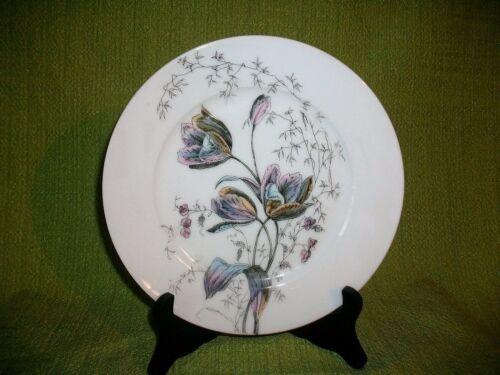 teller 19eme aus porzellan aus paris die dekoration der tulpe