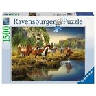 Wild Horses 1500 PC Puzzle by Ravensburger.