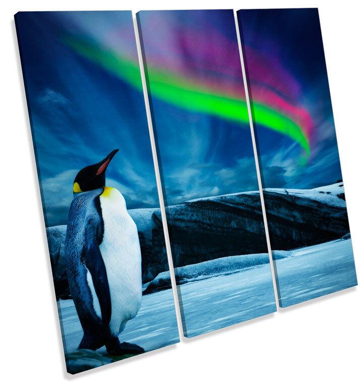 Penguin Northern Lights LONA pared arte Cuadrado Foto impresión Cuadrado arte agudos 2b7e6a