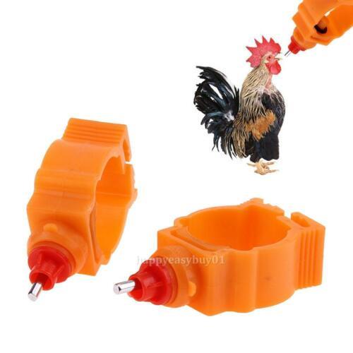 10pcs Automatic Poultry Water Feeder Nipple Drinker Chicken Duck Hen Screw Style