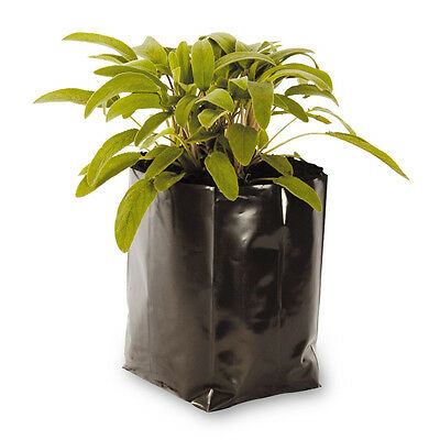 VIVOSUN 10 Gallon Plastic Grow Bag Soil Poly Plant Pot Tomato Root Pouch Black