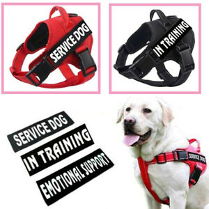 Puppy Service Dog Harness 2 Free
