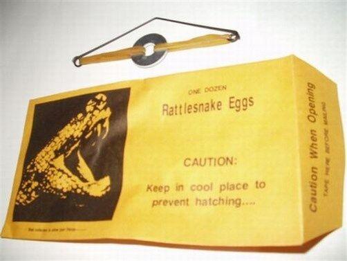 (3) Sonnette Œuf Farce Enveloppes - Drôle Blague Gag Bruit Machine Ruse