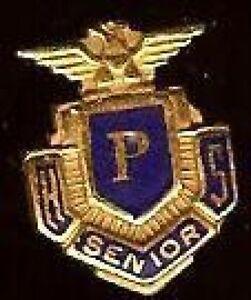 Vintage-P-HS-Senior-Pin-Mini-Miniature-Badge-US-Bald-EAGLE