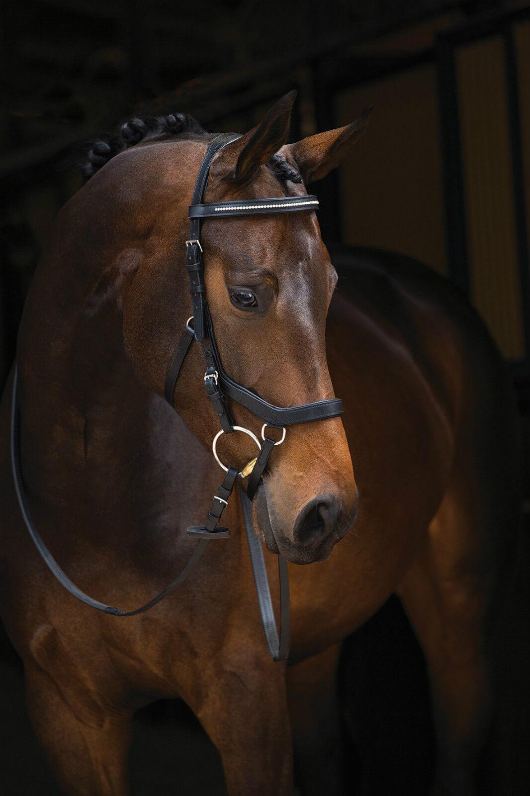 Horseware Rambo micklem diamante Competion Bridle, frenillo, logran contener