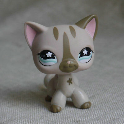 LPS COLLECTION  pale grey Short Hair KITTY RARE TOY #483 LITTLEST PET SHOP