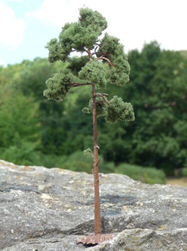 6-pièce pins arbres résineux avec pied hauteur 16cm en qualité supérieure 5f-3