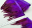 PURPLE BRONZE Rooster Coque Feather Fringe Ribbon Trim Price per 30cm DIYCraft