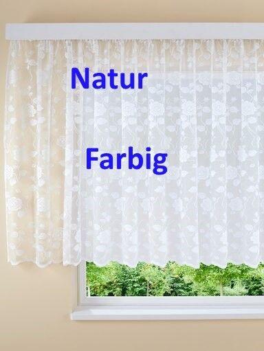 Fretiggardinen Stores Blumenfenster Langgardinen Weiß H//175 x B//750 cm