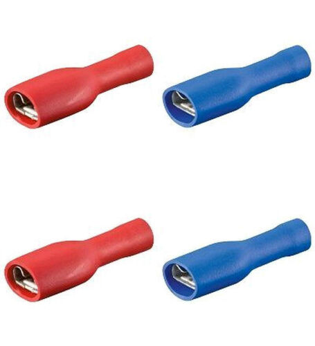 6,3 completamente isolato F 40 TERMINALI piatti femmina rosso//blu Auto