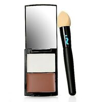 Skinn Cosmetics contour Pro Highlighting And Shading Palette & Blending Brush