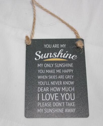 MINI METAL DANGLER/'YOU ARE MY SUNSHINE MY ONLY SUNSHINE ETC..,CAR DOOR HANGING